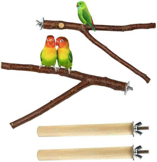 PINVNBY 4Pack Bird