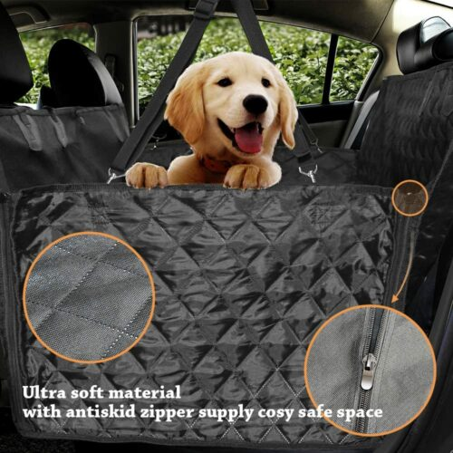 Honest Luxury Quilted Dog